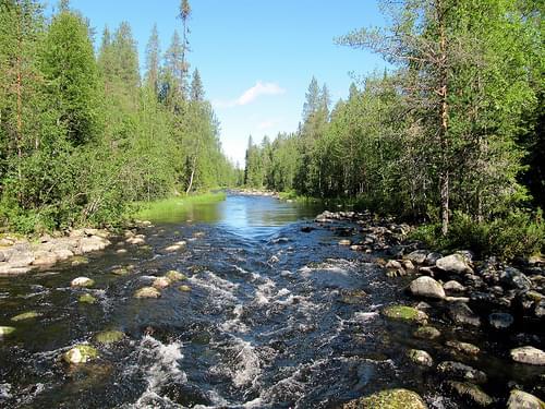 Pieni Kahunkieros, Small Bear Trail, Oulanka National Park