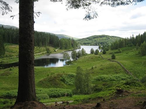 Loch Drunkie nr Aberfoyle