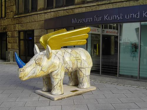 Rhino22
