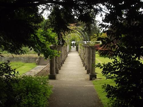 Vine Walk - Dyffryn Gardens