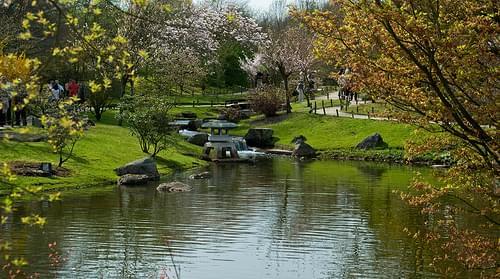 Pond with stone lantern