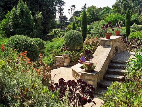 Tresco Abbey Gardens, Scilly Isles, UK | A superb Sub-Tropical Garden (3 of 12)