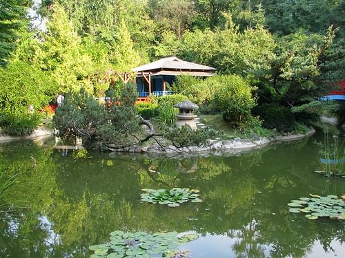 Botanical Garden, Cluj-Napoca, Romania 2008