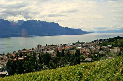 Montreux, Lake Geneva, the Alps and the ... grapevine