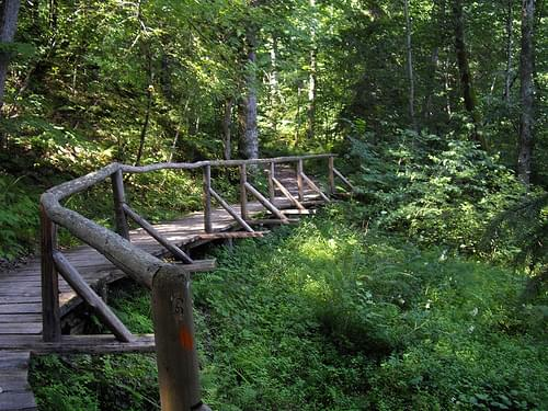 Gauja_Valley_Hiking_Trail-2010-July-07