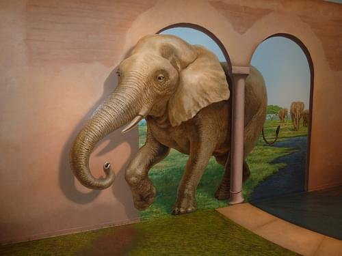 Elephants @ Trick Art Museum