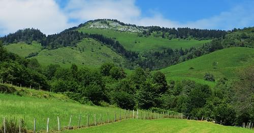 Montée vers le col de Marie-Blanque, Béarn, Pyrénées Atlantiques, Aquitaine, France.