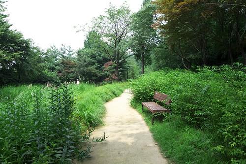 20 Namsan Botanical Garden