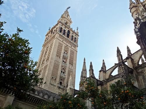 Patio de los naranjos de la Catedral de Sevilla.