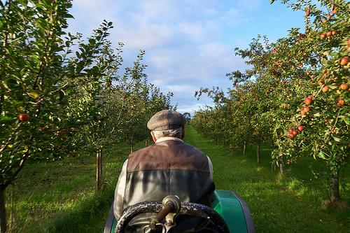 Highbank Orchards