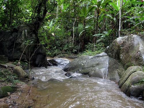 Mok Fah stream, N. Thailand