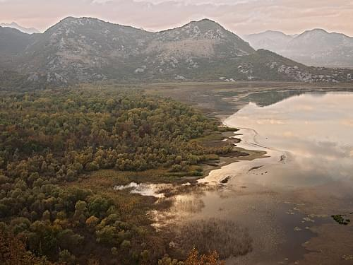 Autumn colours at Lake Skadar, Montenegro