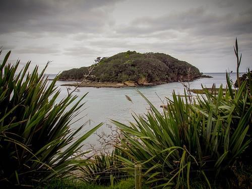 Goat Island, NZ