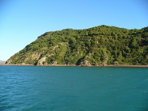 Approaching Matiu/Somes Island