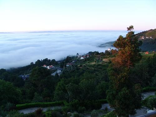 Foggy Morning - Caramulo 2004