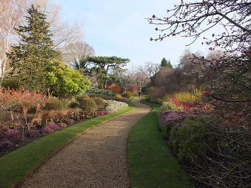 The Winter Garden in Winter Sun