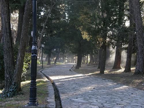 City Park, Tivat