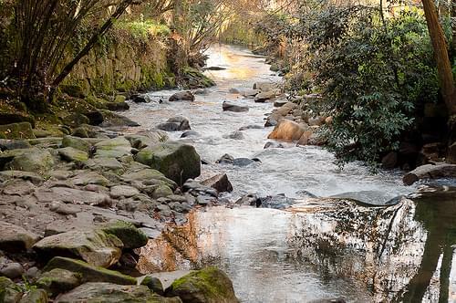 Río Lagares
