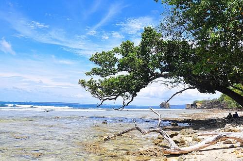 Trekk in Ujung Kulon