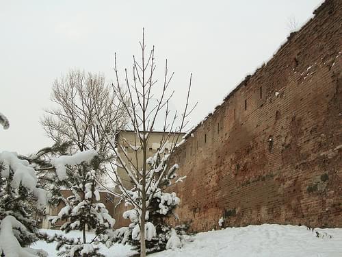 Rumänien 2010/11