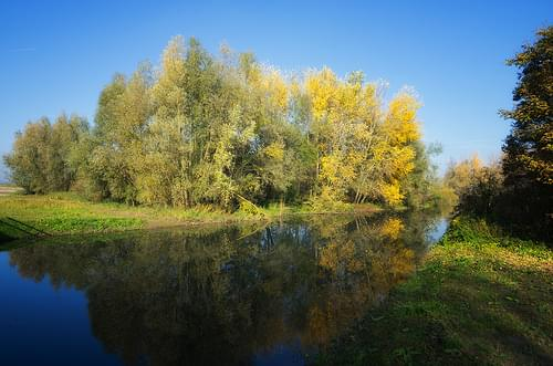 De Biesbosch National Park