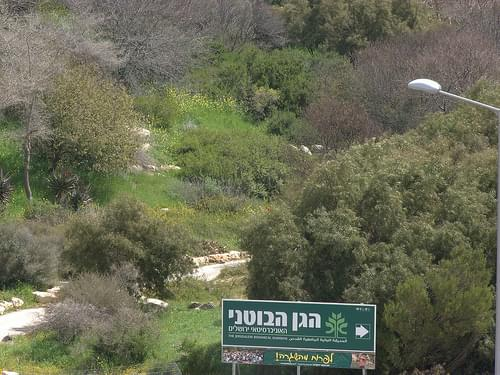 Jerusalem Botanical Garden-2
