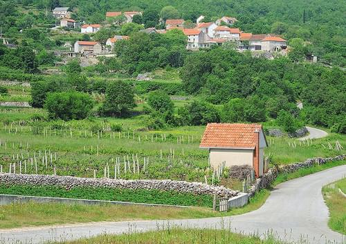 Village Lokvicici. Croatia