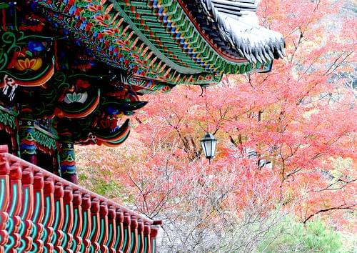 2015 11 Namwon Backyan Temple 092A2126