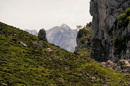 Panorama de los Picos de Europa