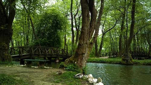 Vrelo Bosne (Spring of the Bosna)