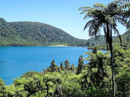 150111.143 Tikitapu Blue Lake, Rotorua, Helen Road Trip, NZ