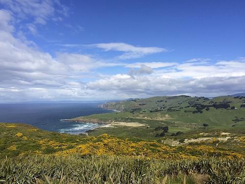 Otago Peninsula Weekend