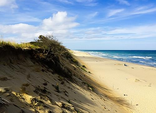 Sand Dune at Marconi Beach