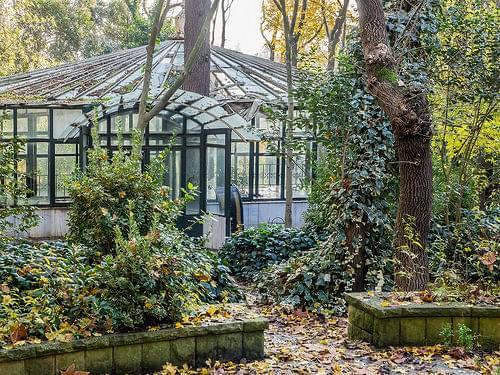 Abandoned winter garden glasshouse