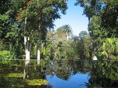 Botanic Gardens, Puerto de la Cruz