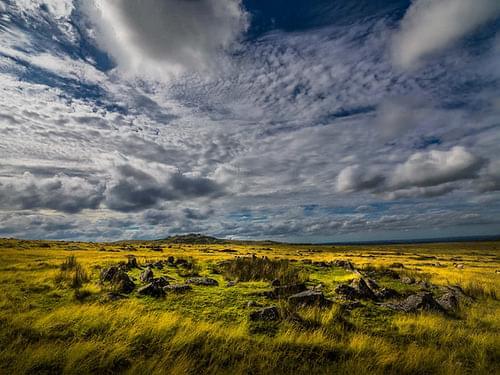 morning moorland