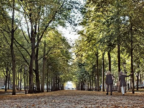 Lange Voorhout, The Hague