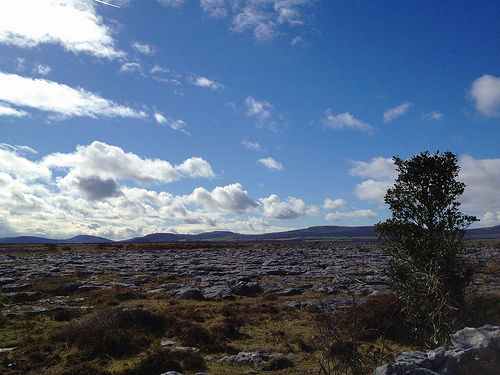 sunshine in the Burren