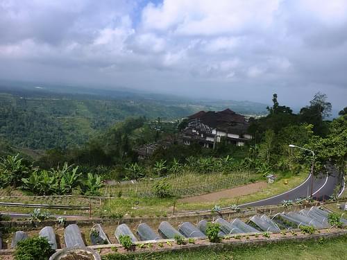 Bali-Route Jatiluwih-Bedugul-Munduk (2)