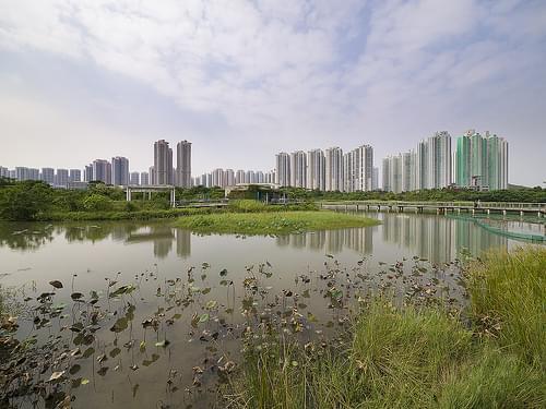 香港濕地公園 Hong Kong Wetland Park