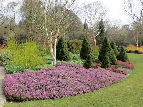 The Sir Harold Hillier Gardens and Arboretum