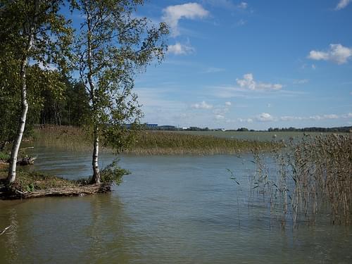 71 Ülemiste järv