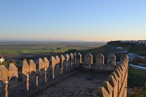 Vega de Carmona desde el Alcázar de Sevilla