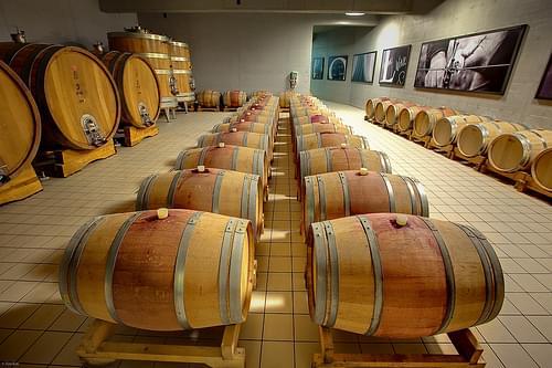 Kozlović Winery