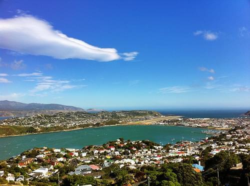 Cw Wellington Mount Victoria Lookout