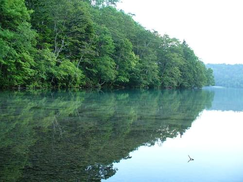 Onnetoh Lake National Park