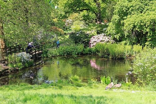 Savill Gardens 16-05-2014