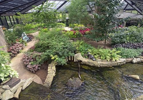 Huntsville Botanical Garden 09-05-2014 - Purdy Butterfly House 42