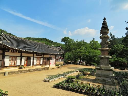Magoksa Temple (5)
