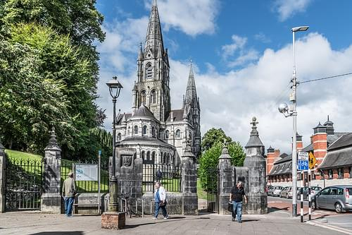 Saint Fin Barre's Cathedral [Cork City]--118646